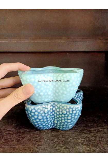 Cute Starfish Pot
