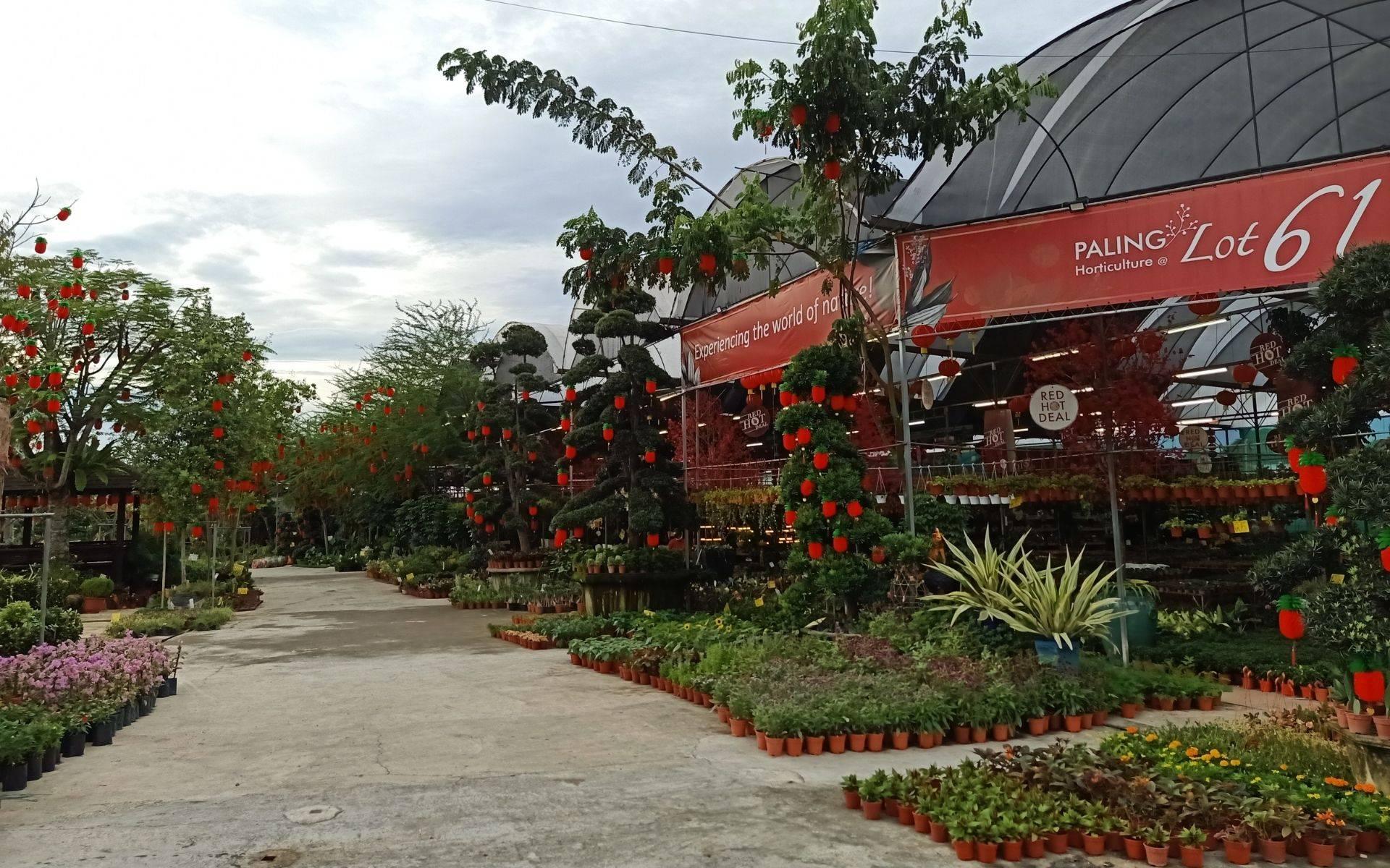 Browse through our unique array of plants